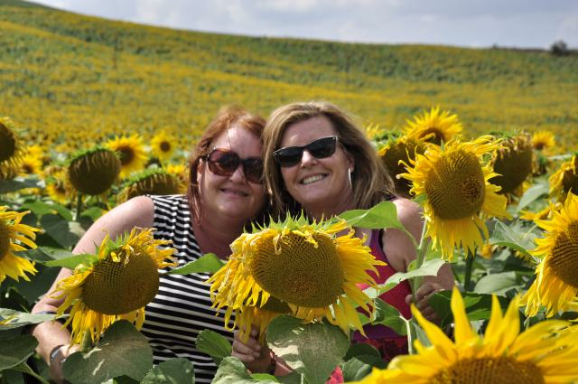My sister, Ang, and I in a forever field of sunflowers just south of Sienna, a few hours away in Italy.