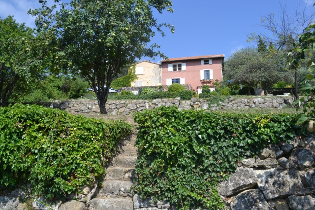 27 stone wall terrases on the property with more than 70 olive trees and a wide variety of fruit trees